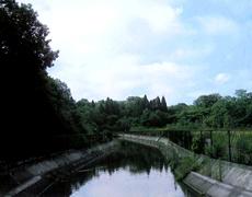 表紙写真に見る日本の農業水利施...